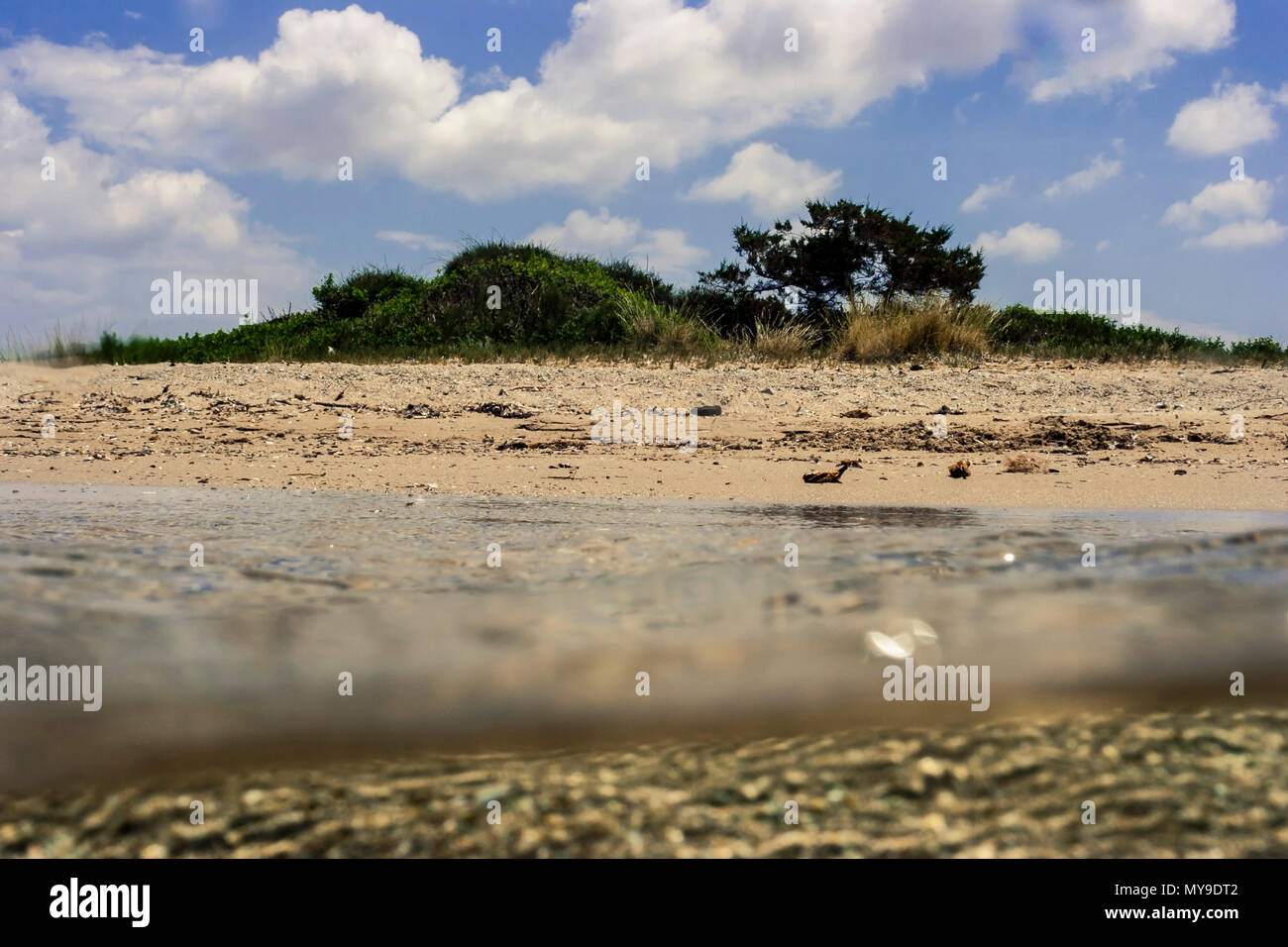 Split level over-under underwater sea image of foliage in Greek beach with golden sand on bright sunny day, - Stock Image