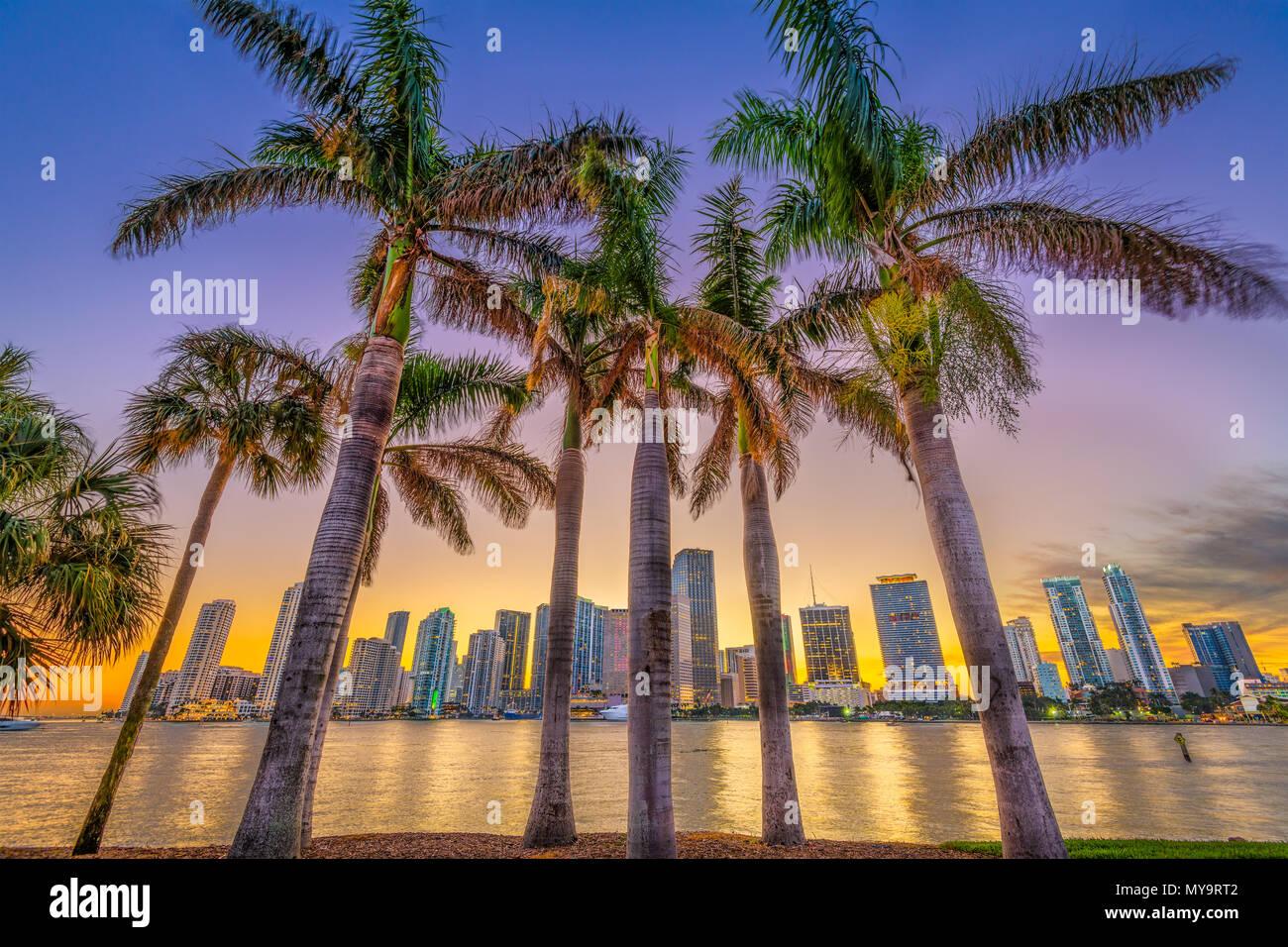 Miami, Florida, USA skyline on Bisayne Bay at dusk. - Stock Image