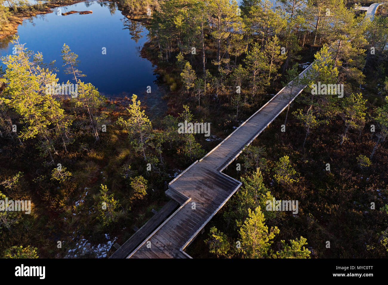 Scenic view from drone of wooden boardwalk decking between lake and swamp in nature reserve park. Bog marsh landscape drone point of view - Stock Image