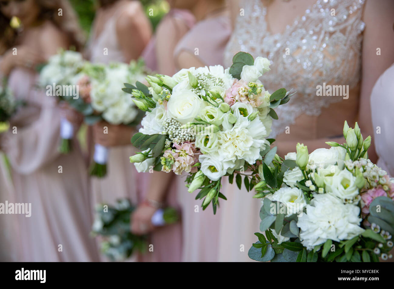 Bride and bridesmaids in pink dresses reach out their hands with tender wedding bouquets. wedding traditions Stock Photo