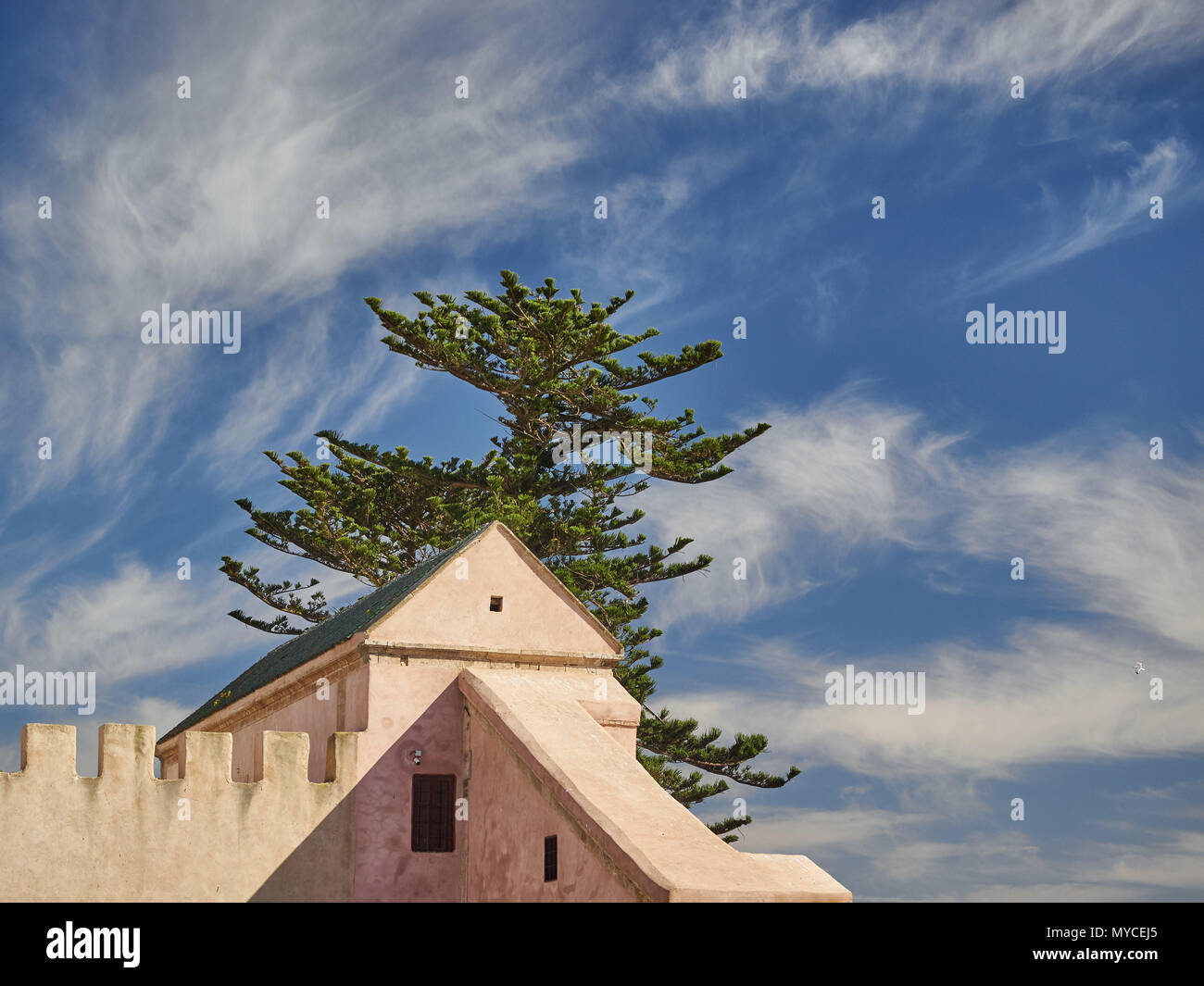 Top of the yellow house, over the roof of a huge coniferous tree against a blue sky background with white clouds divorces. - Stock Image