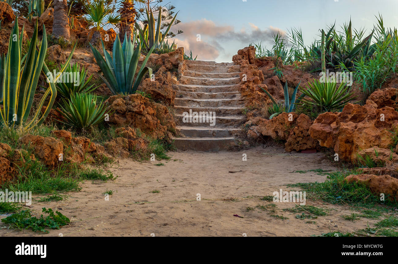 Natural stone stairway with green bushes on both sides and partly cloudy sky at Montaza Public Park in summer time, Alexandria, Egypt - Stock Image