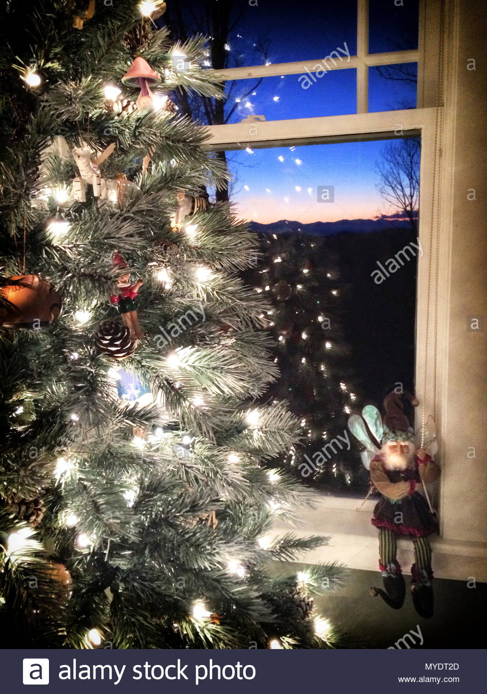 A fairy figurine sits by a Christmas tree whose lights are reflected in a window at dusk. - Stock Image