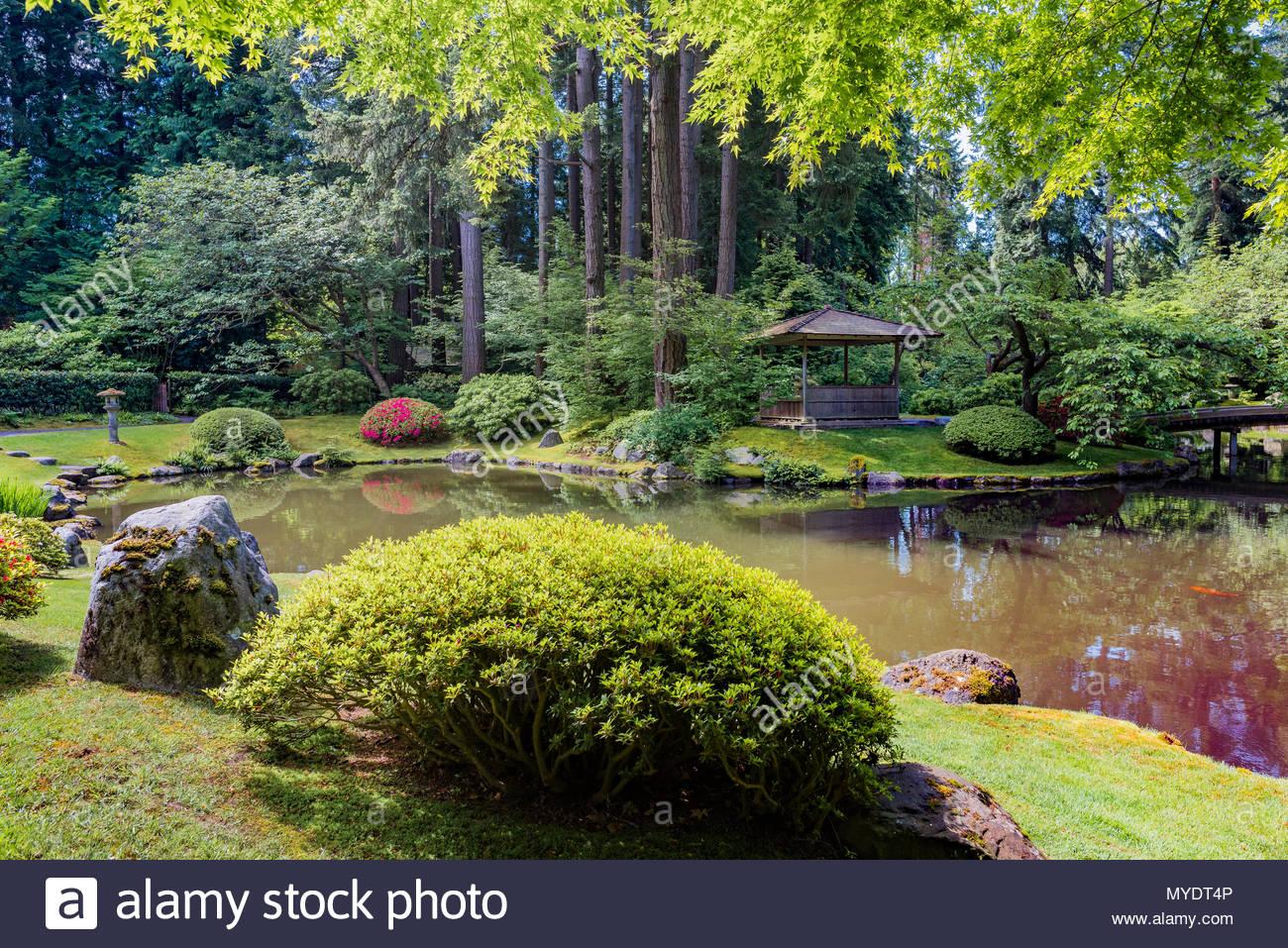 Nitobe Memorial Garden, traditional Japanese garden, University of British Columbia, Vancouver, British Columbia, Canada.
