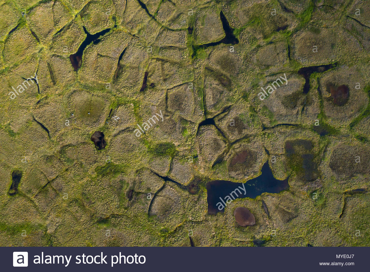 Natural polygonal shapes appear across the tundra landscape as a result of permafrost melt. - Stock Image