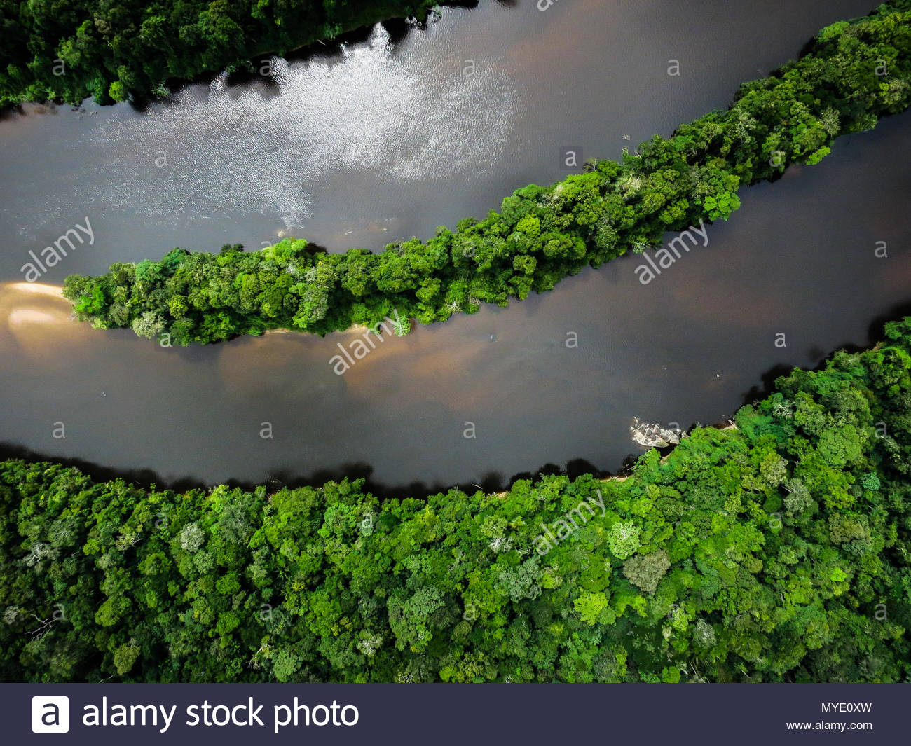 Aerial view of the Coppename River in the Amazon Rainforest. - Stock Image