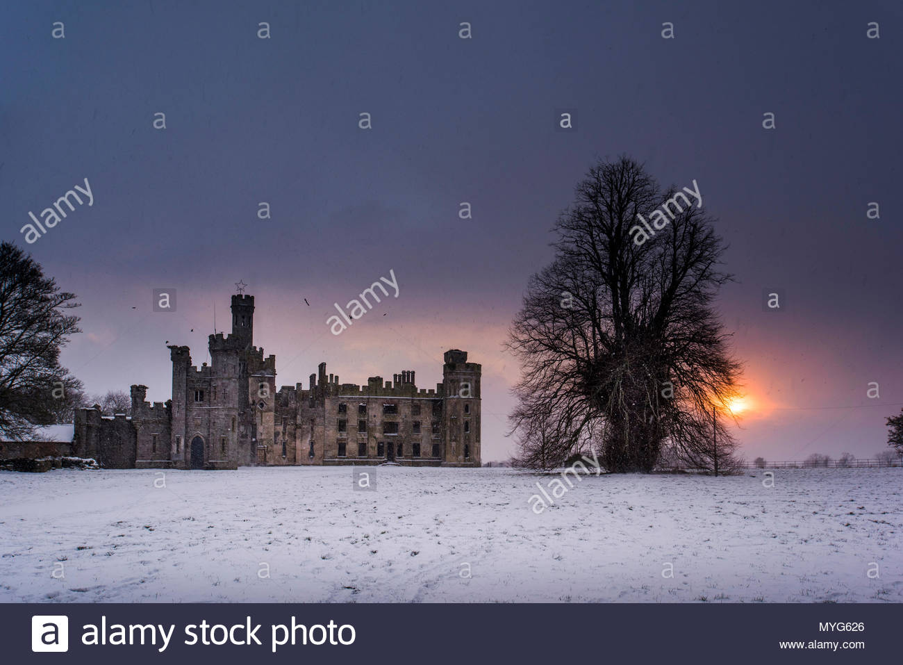 Ruins of a Gothic Revival 19th century estate house, Duckett's Grove. - Stock Image