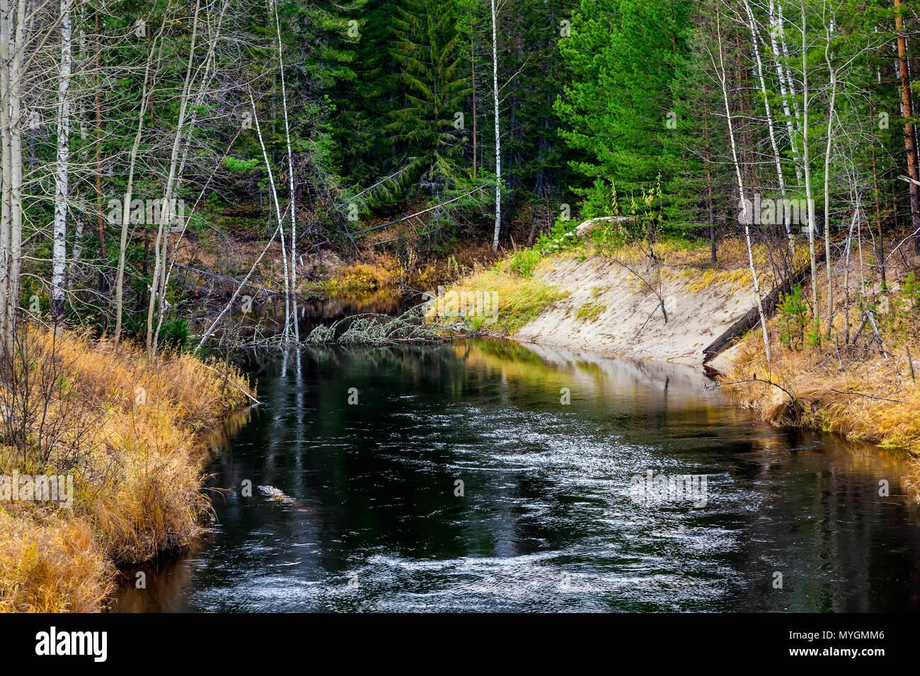 Black River - Stock Image