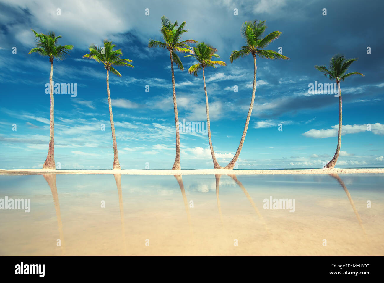 Coconut Palm trees on white sandy beach in Punta Cana, Dominican Republic. - Stock Image