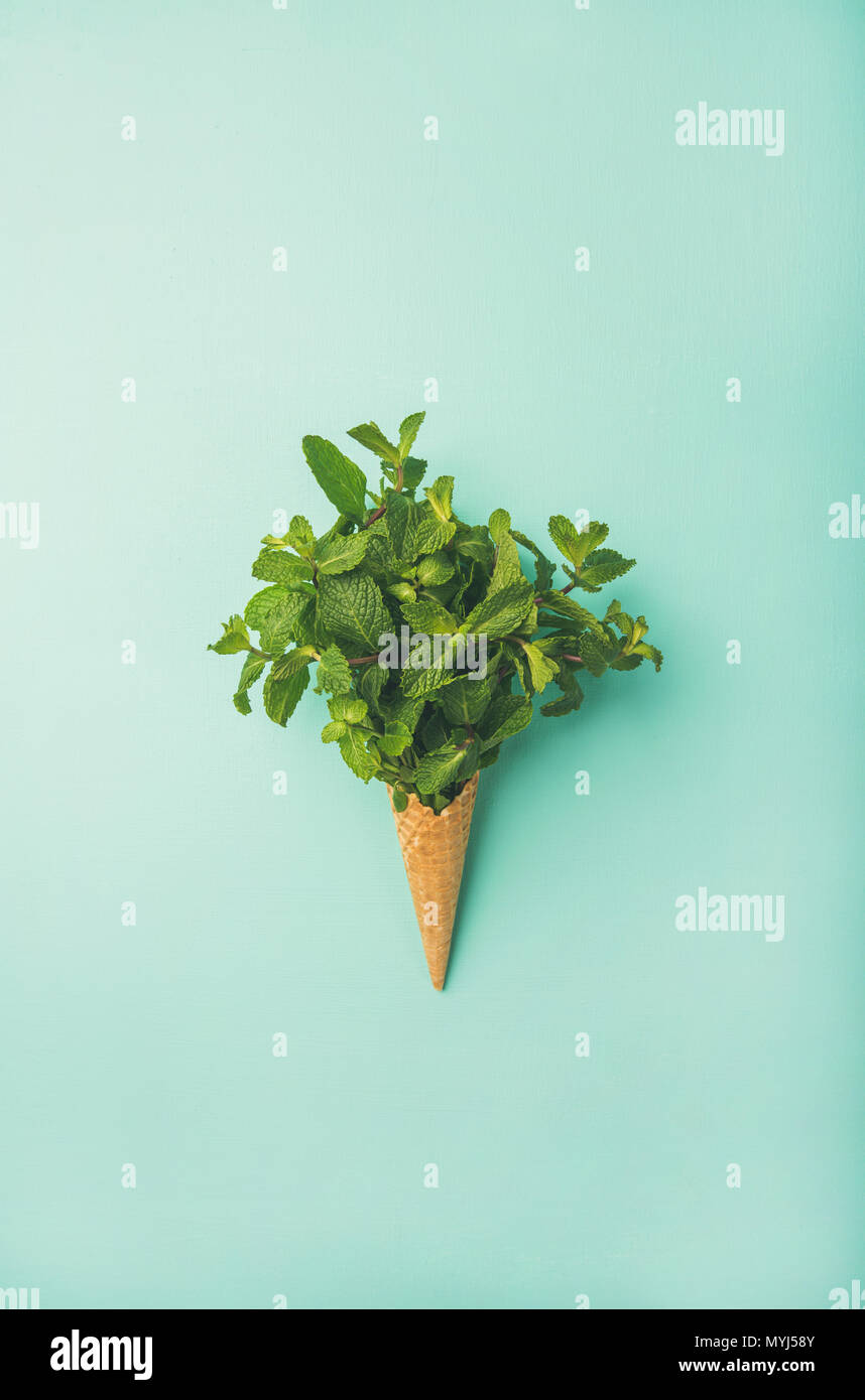 Waffle cone with fresh mint over blue background, vertical composition - Stock Image