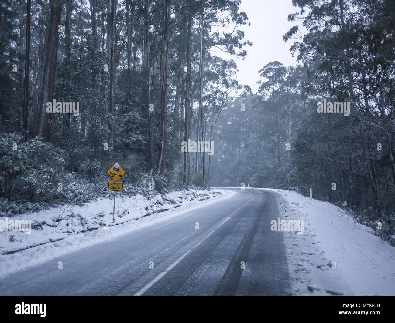 Slippery road warning sign for car drivers on side of a snow covered road. Icy scenic mountain route in winter forest. Mt Donna Buang, VIC Australia - Stock Image