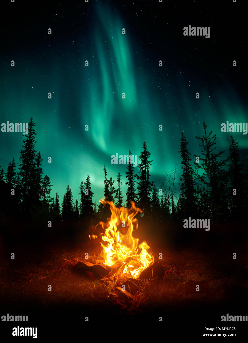 A warm and cosy campfire in the wilderness with forest trees silhouetted in the background and the stars and Northern Lights (Aurora Borealis) lightin - Stock Image