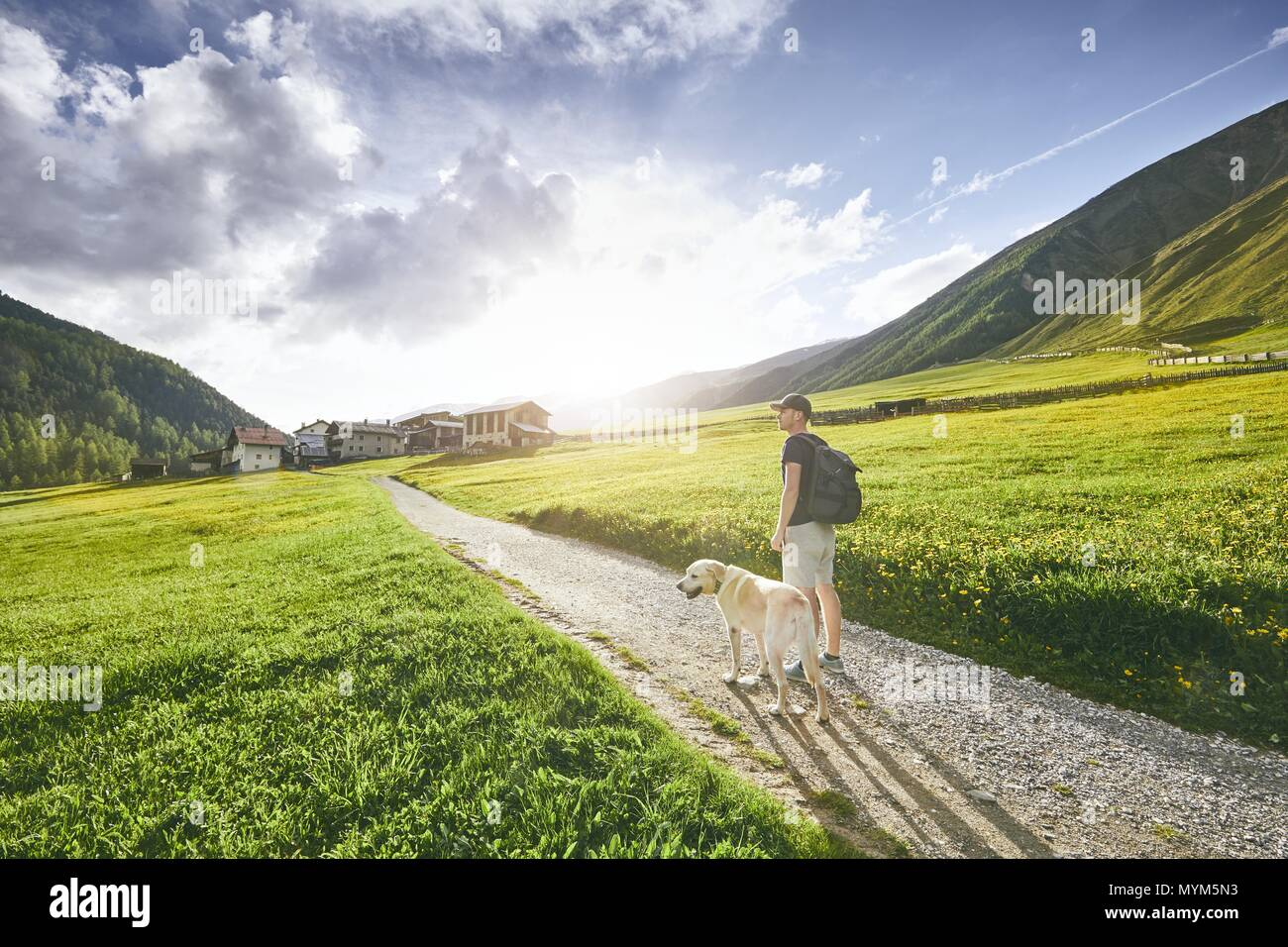 Tourist with dog in countryside. Young man walking with labrador retriever on dirt road against sunset. South Tyrol, Italy Stock Photo