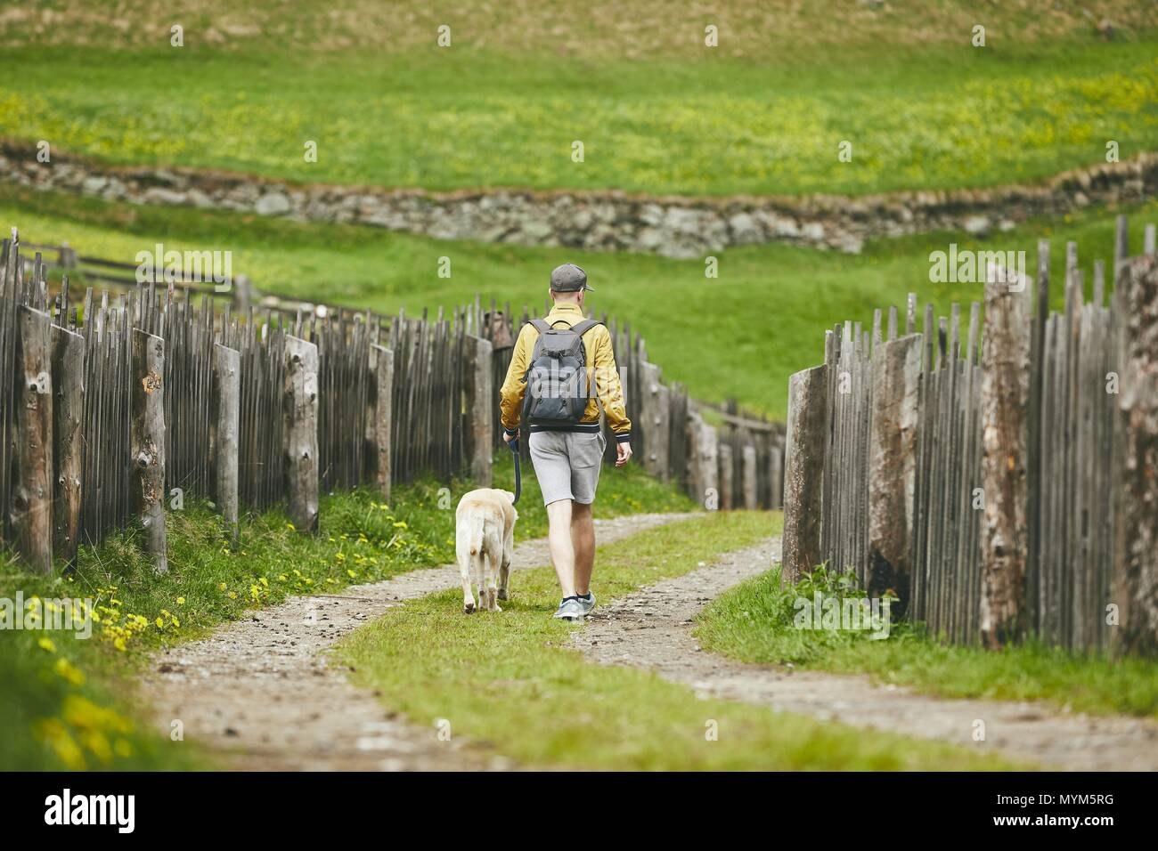 Tourist with dog in countryside. Young man walking with labrador retriever on dirt road. - Stock Image