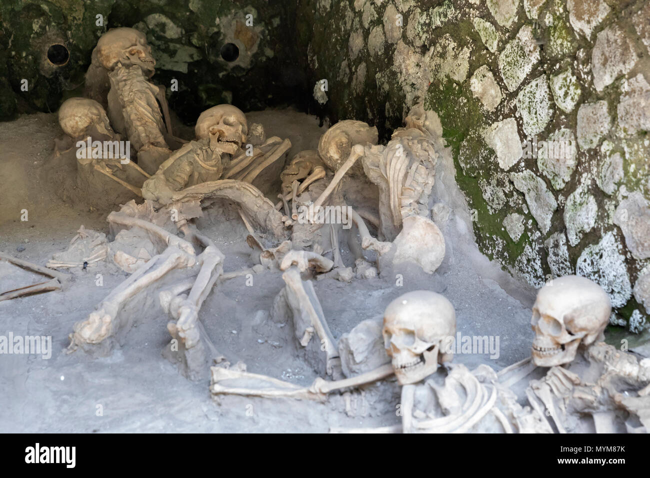 Skeletons of the victims of the Mount Vesuvius eruption of AD 79 found under the barrel arches at the ancient Roman archaeological site of Herculaneum - Stock Image