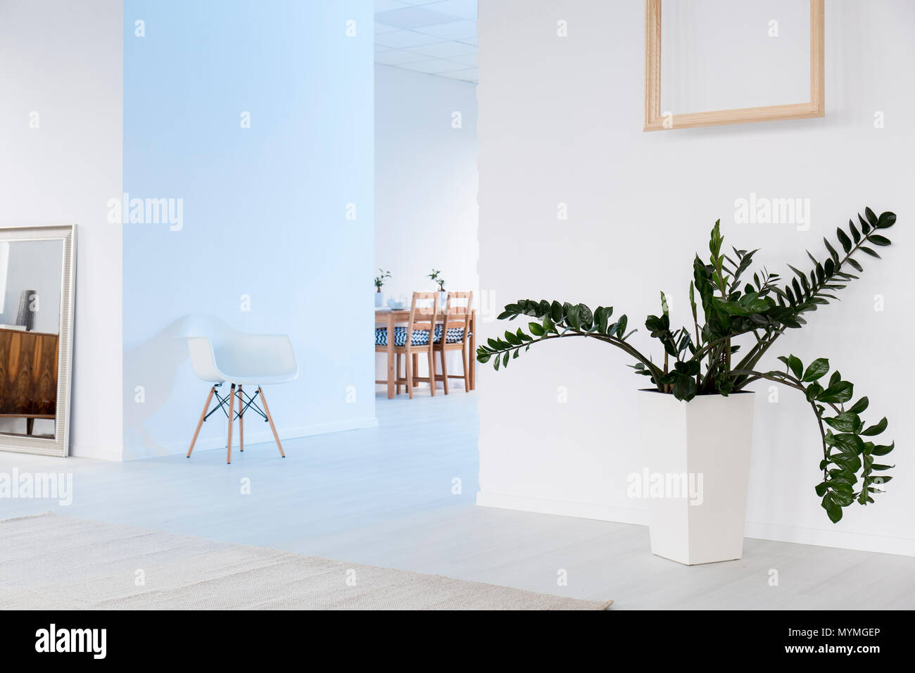 Spacious, white interior with big mirror, chair and plant in ...