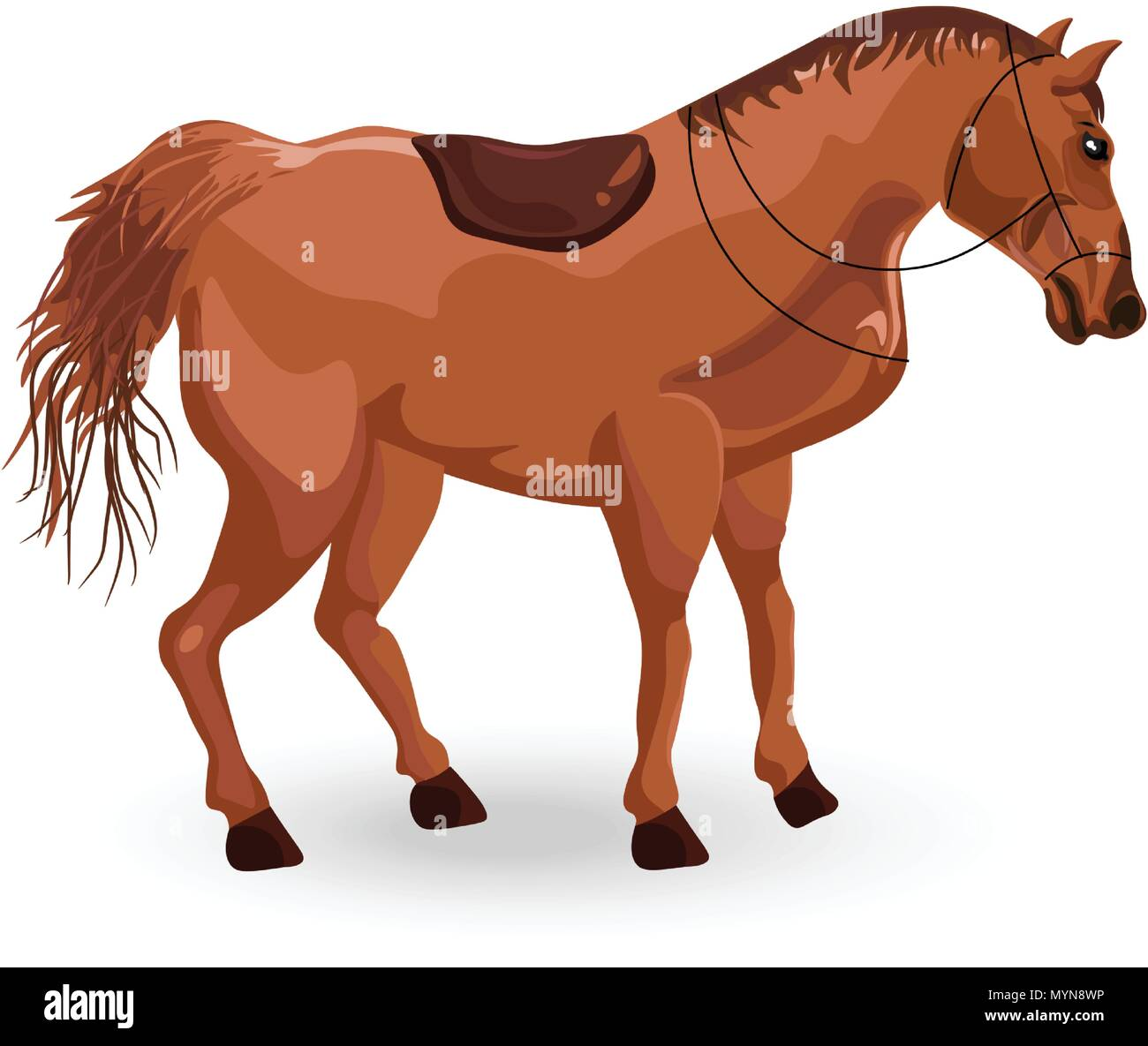 Horse isolated Vector. Elegant Detailed animal illustration - Stock Vector