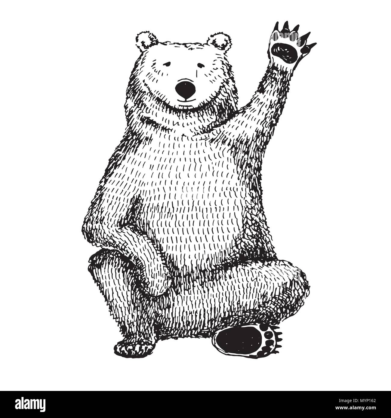Sketch of a waving bear. Vector illustration. - Stock Image