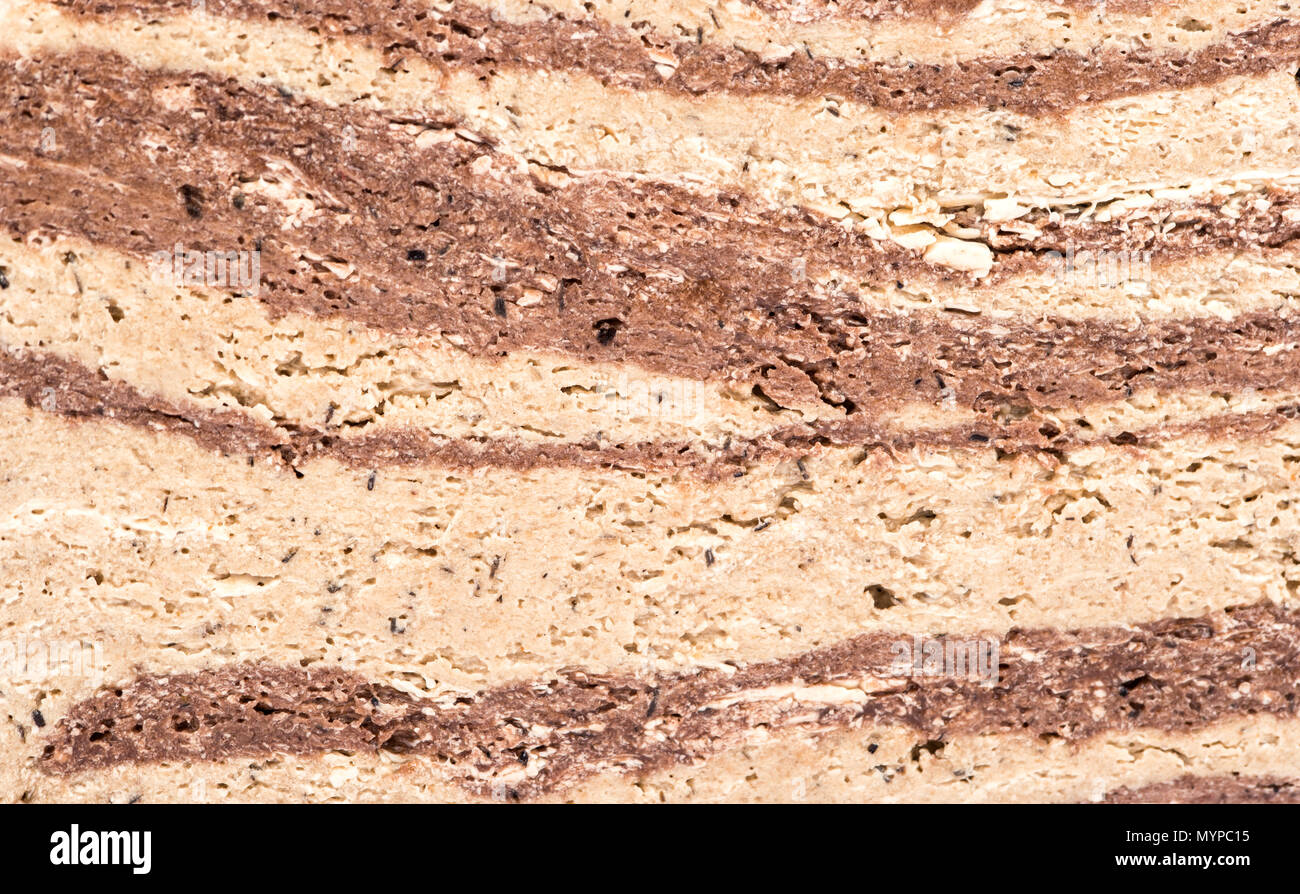 Background of striped halva with cocoa closeup - Stock Image