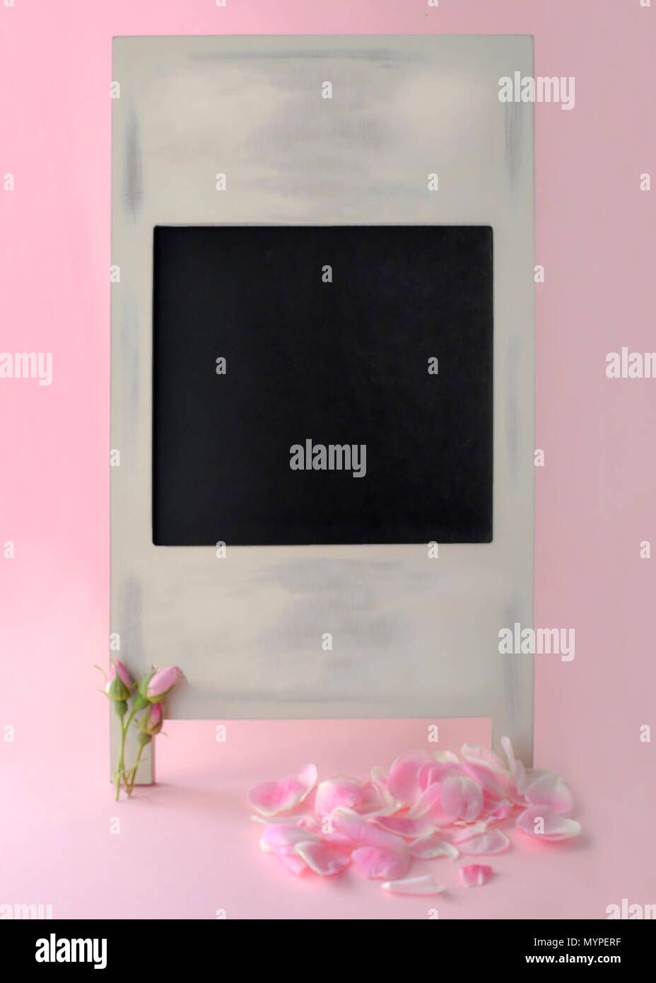 blank chalkboard with pretty pink rose buds and petals  shot in a soft focus for the use in text over lay announcements, notices and massages - Stock Image