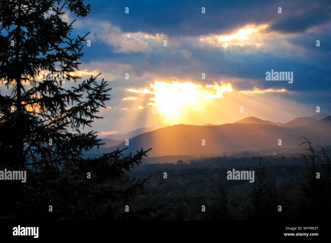 Sun rays illuminate the Blue Ridge Mountains through silhouette of Blue Spruce tree. Asheville, North Carolina. - Stock Image