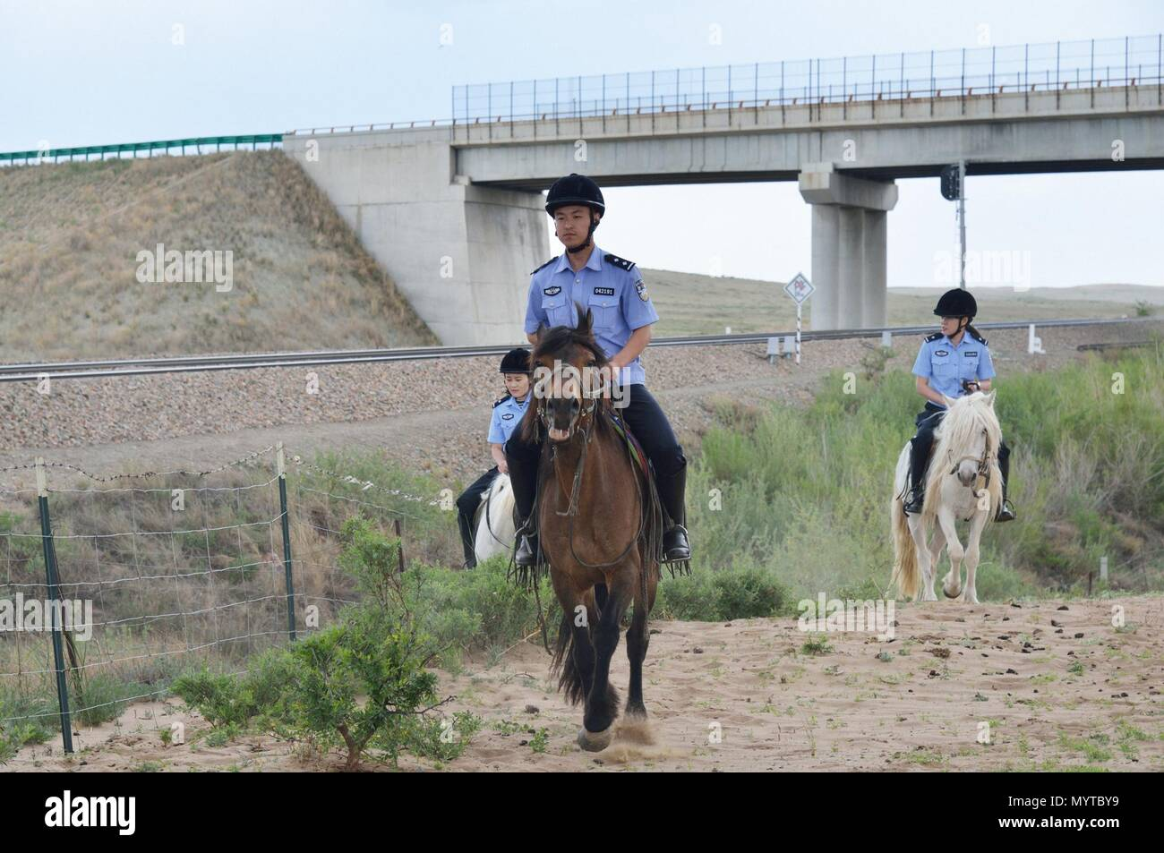 (180608) -- XILINHOT, June 8, 2018 (Xinhua) -- Mounted police patrol along railroad in Xilinhot, north China's Inner Mongolia Autonomous Region, June 7, 2018. In order to keep railroads in operation, mounted police in Xilinhot are busy repairing broken safety net and checking livestock intrusion while patrolling along railroads. (Xinhua/Zou Yu) (wyl) - Stock Image