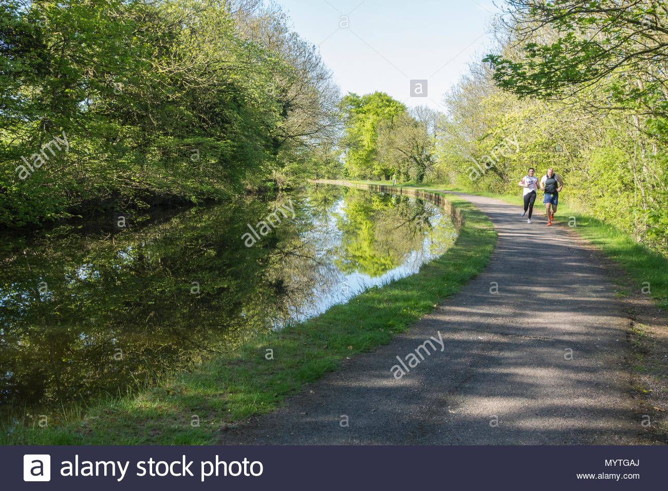 Walkers on the towpath of the Lancaster Canal, near to Bolton le Sands - Stock Image