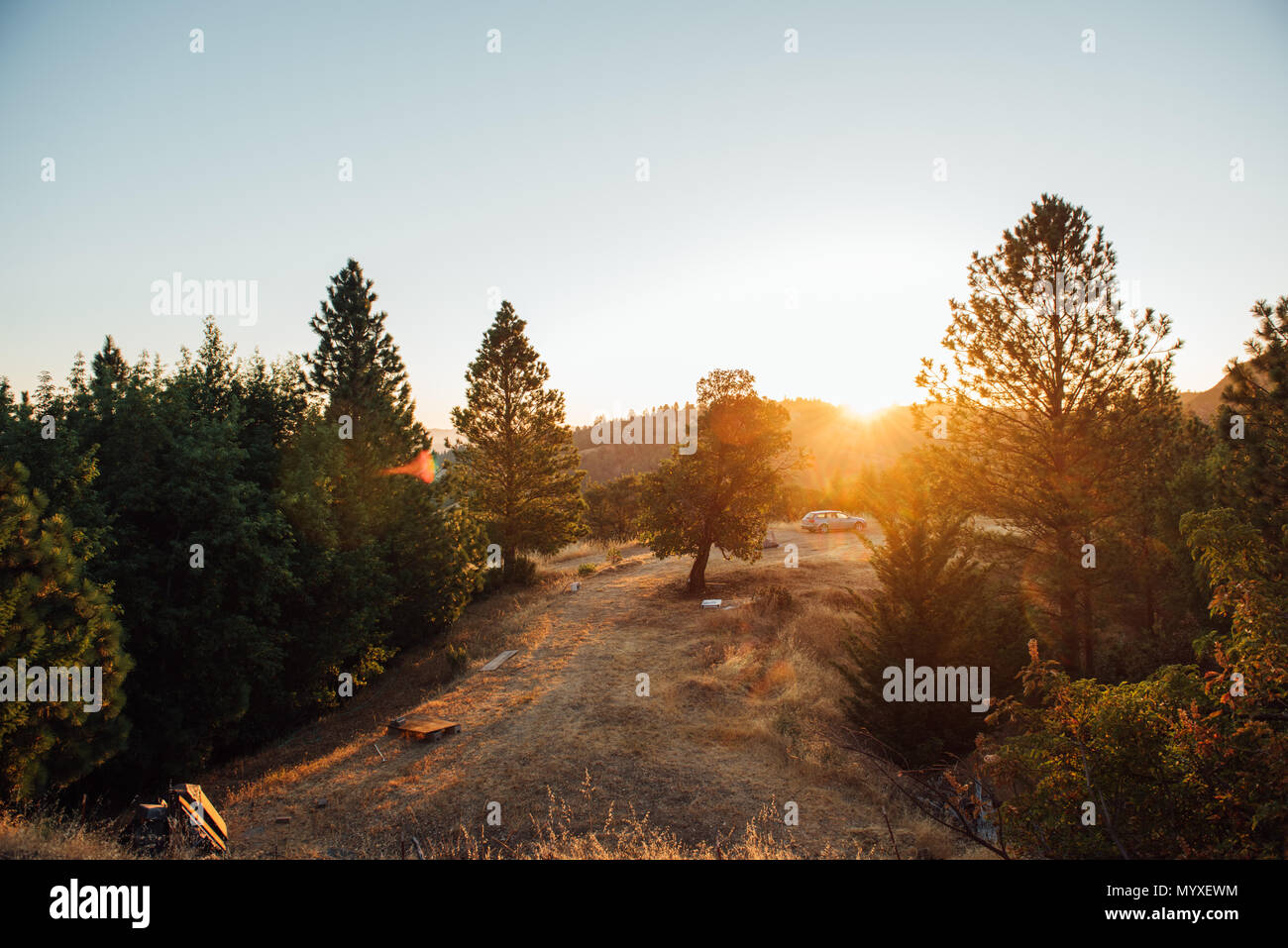 Car Camping in the Wilderness - Stock Image