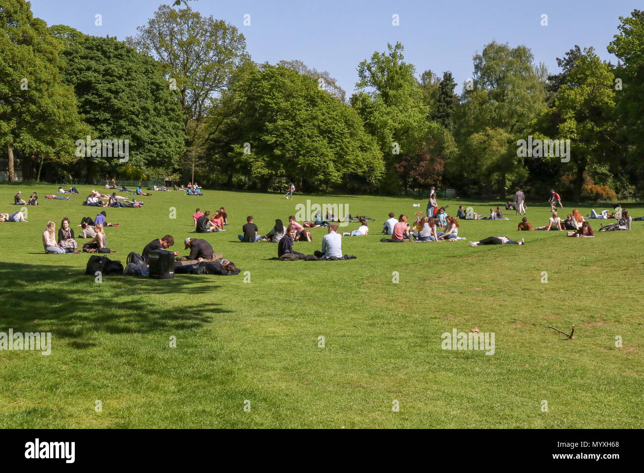 Young people and students sitting on the grass in a UK public park on a hot sunny day. Botanic Gardens Belfast Northern Ireland. - Stock Image