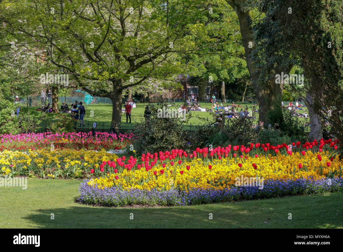 Bright coloured flower beds in a UK park with people relaxing on a suuny day. - Stock Image