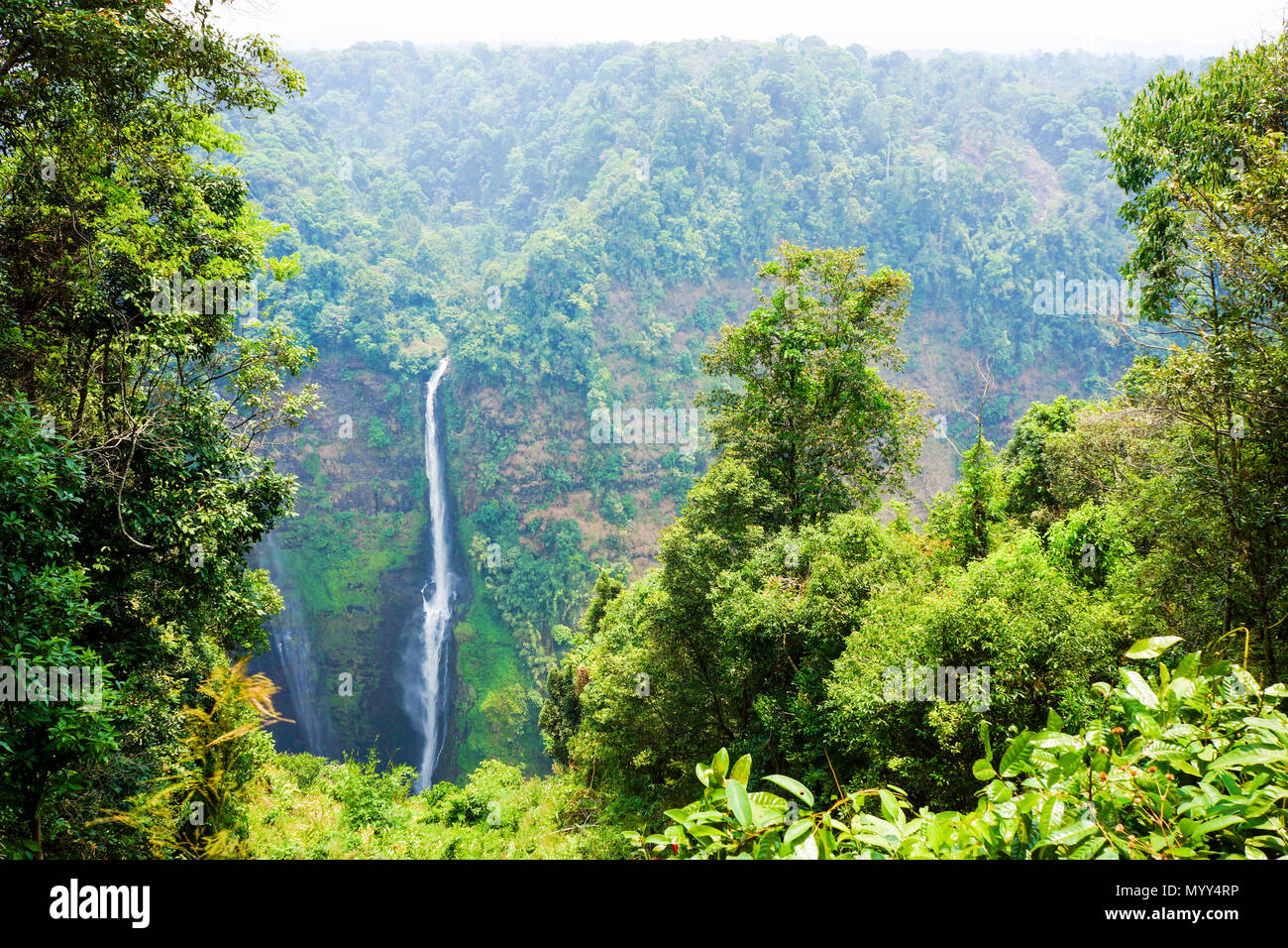 streaming line waterfall from high mountain in Laos Stock Photo