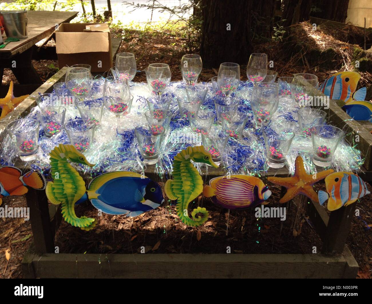 California, USA. 19th July, 2015. A toss game is set up at the annual Occidental Volunteer Fire Department BBQ. - Stock Image