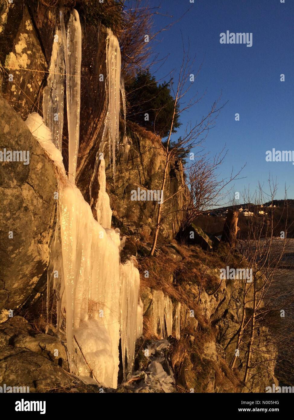 Teiglandsvegen 29, Nyborg, Norway. 07th Jan, 2016. EUweather: Beautiful icicles, bading in the sunlight along the - Stock Image