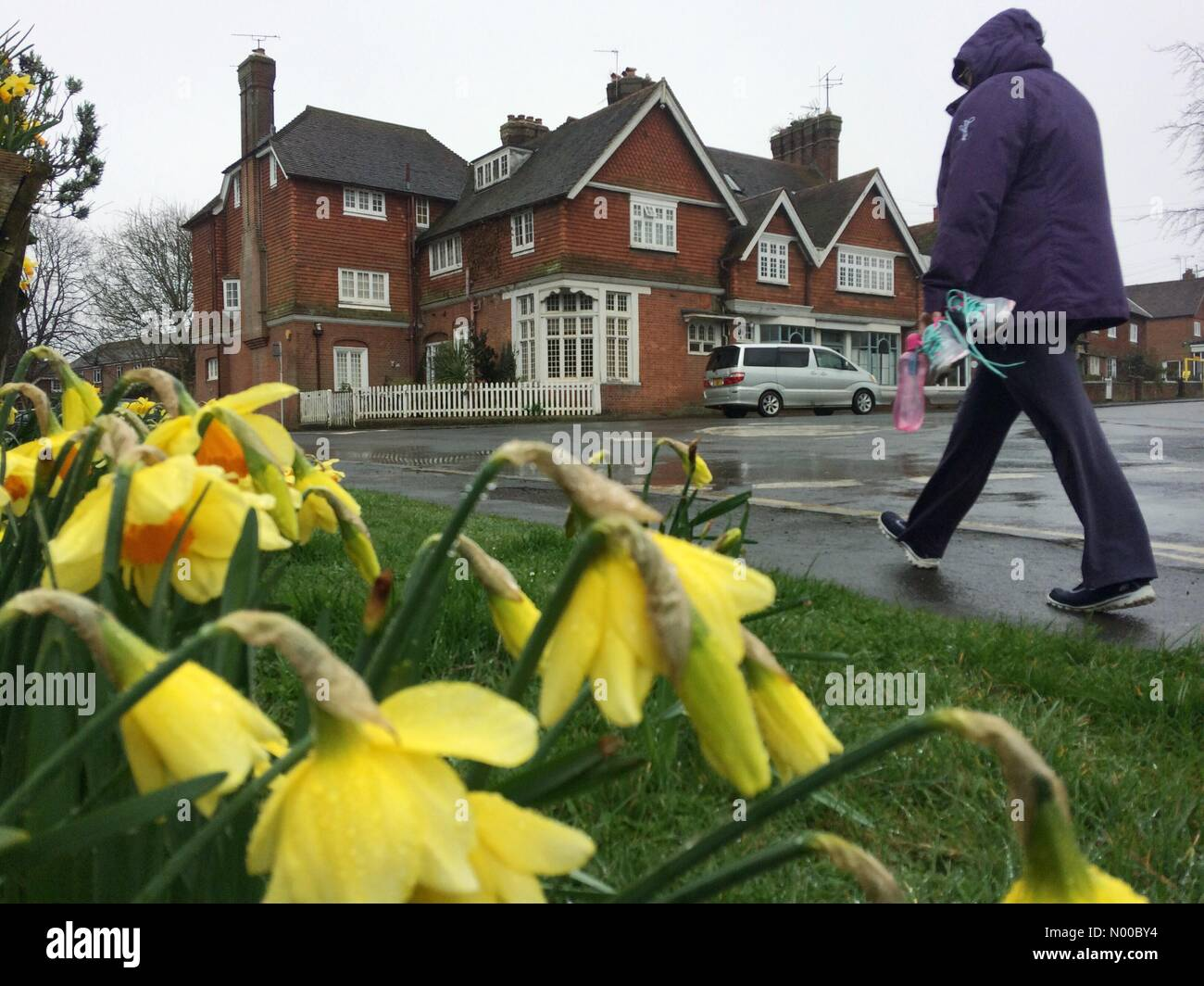 Barcombe, Wast Sussex, UK. 20th March 2017. Wet and windy vernal equinox, which marks the first day of spring. Credit: - Stock Image
