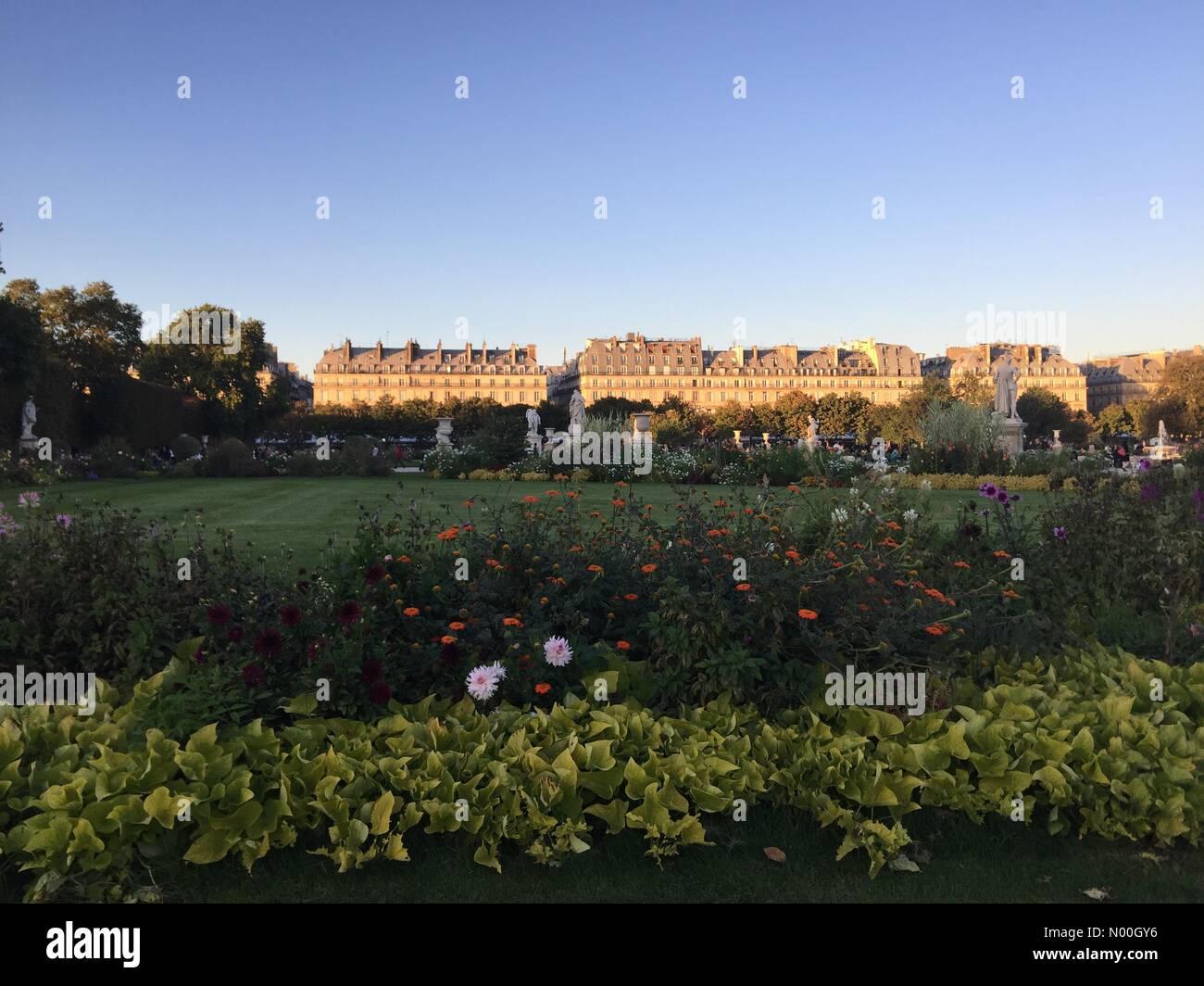 75001 Paris, France. 22nd Sep, 2017. Tuileries gardens sunset light, Paris Credit: InesAmd/StockimoNews/Alamy Live - Stock Image
