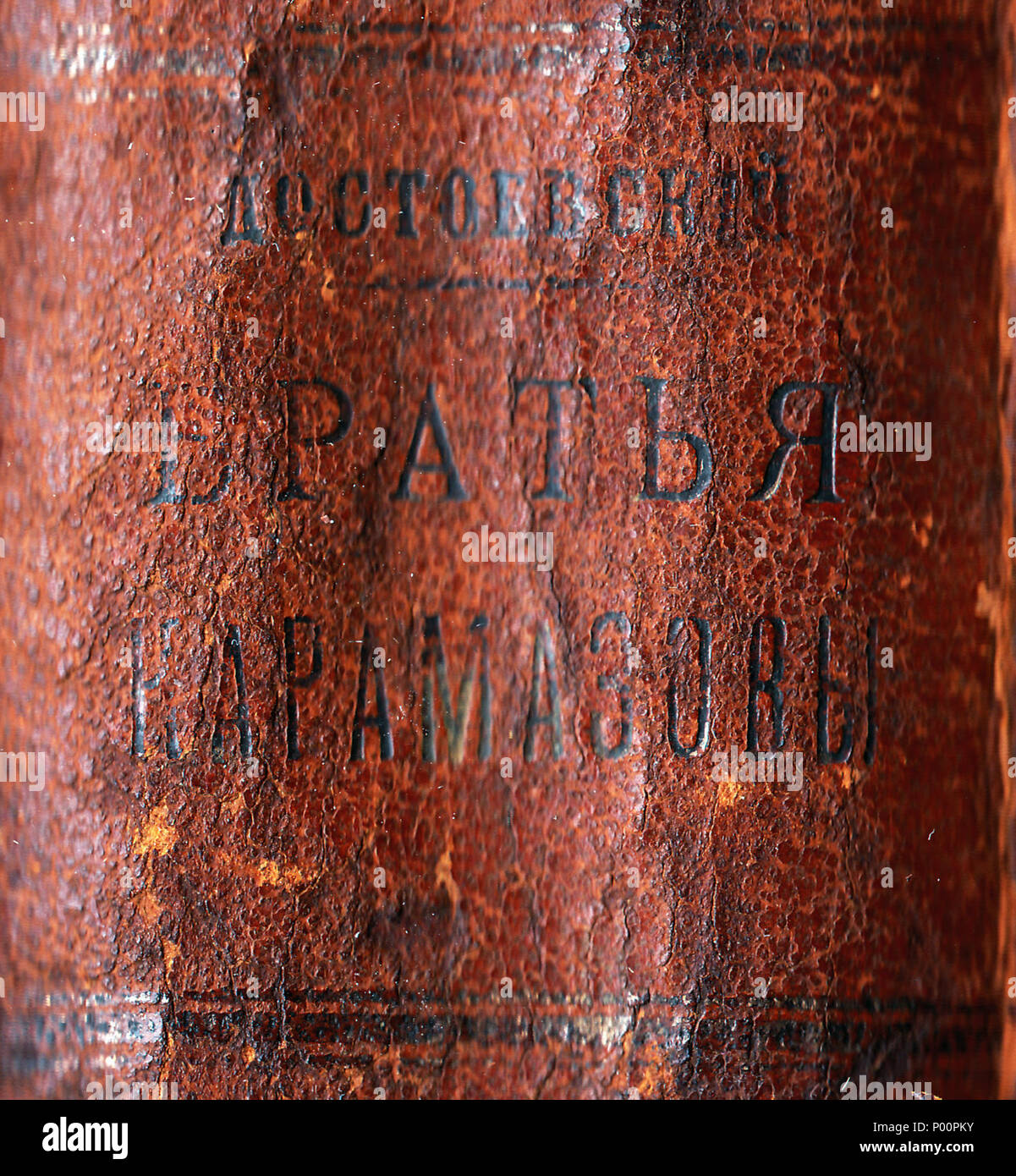 . English: Second volume (including Parts III–IV and Epilogue) of the first Russian edition of The Brothers Karamazov, published in Saint Petersburg in 1881 by Типография брат. Пантелеевыхъ, contemporary quarter leather bound with cloth-covered boards, 15×20 cm  . 1881. Photographs by Sigedon Ars Memoriae, text by Fyodor Dostoyevsky 98 The Brothers Karamazov first edition spine - Stock Image