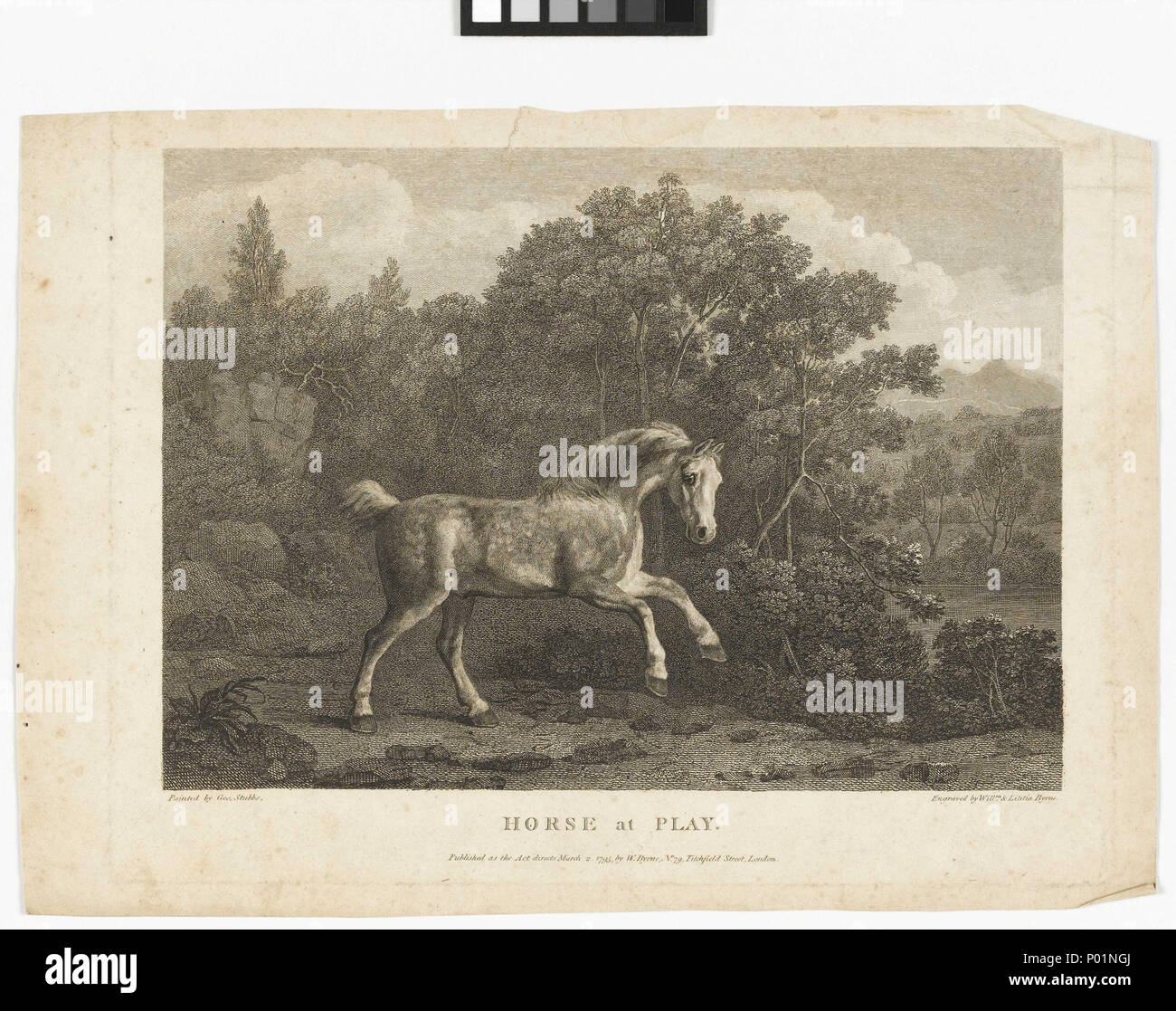 English: \'Horse at Play\' \'Horse at play\' after George Stubbs. Stubbs ...