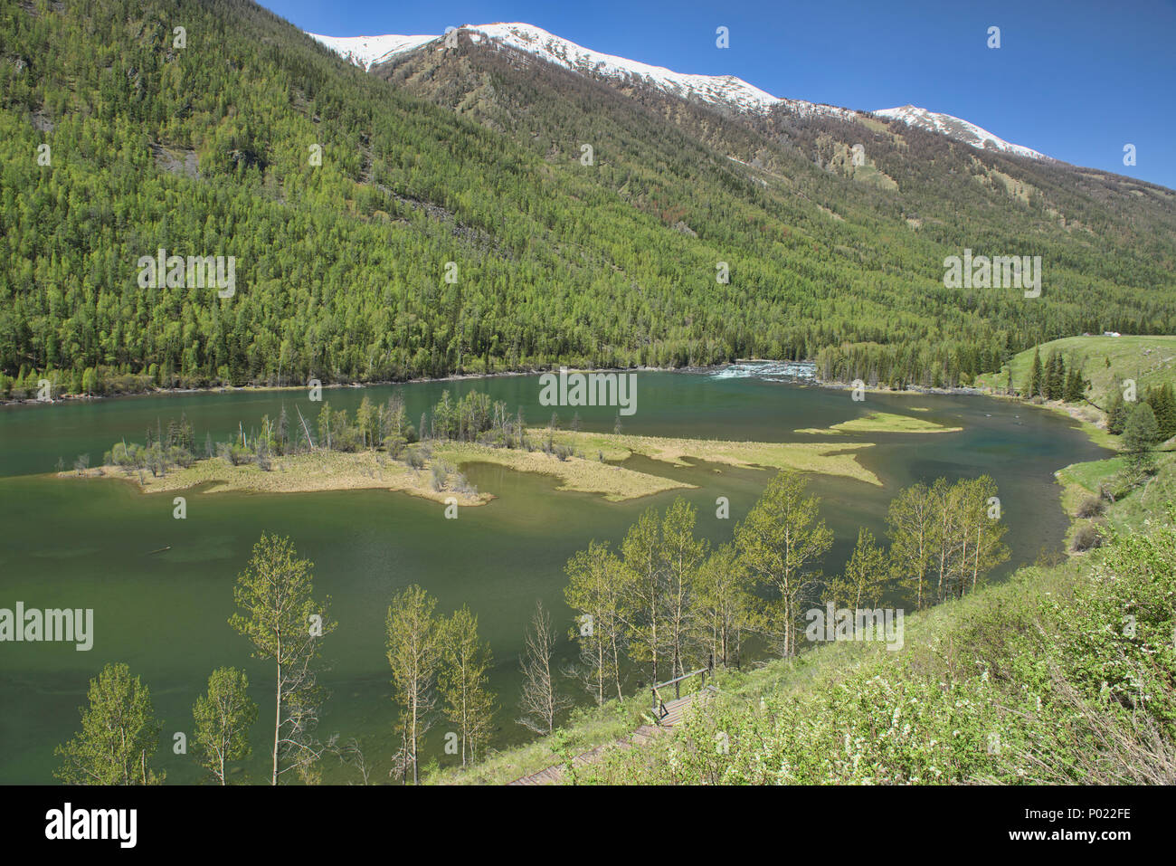 Gorgeous northern scenery at Kanas Lake National Park, Xinjiang, China - Stock Image