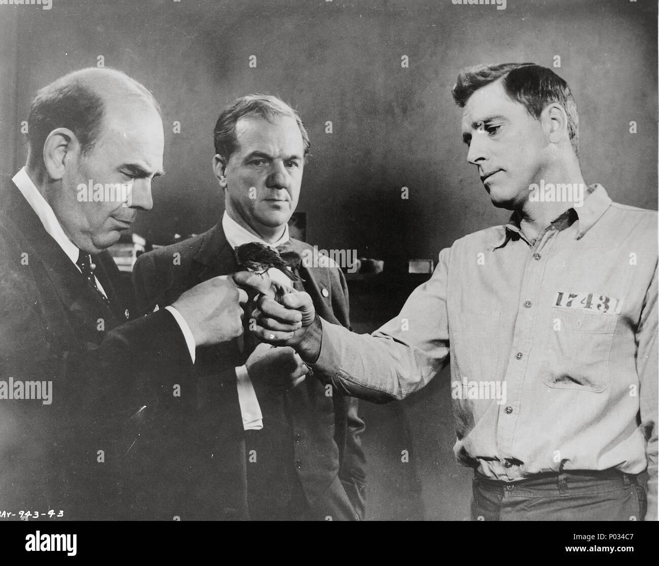 Original Film Title: BIRDMAN OF ALCATRAZ.  English Title: BIRDMAN OF ALCATRAZ.  Film Director: JOHN FRANKENHEIMER.  Year: 1962.  Stars: KARL MALDEN; BURT LANCASTER. Credit: UNITED ARTISTS / Album Stock Photo