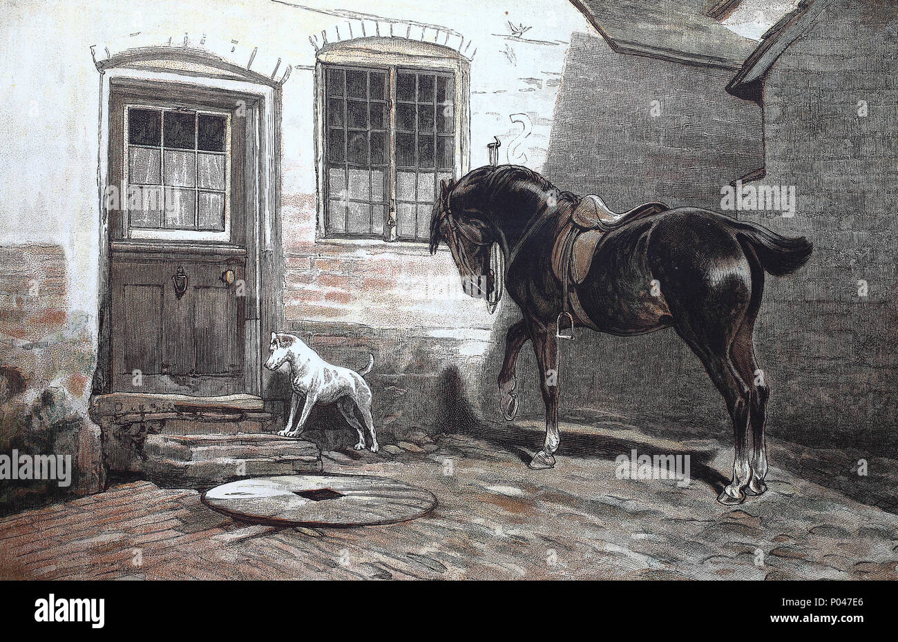 dog and horse getting impatient for the people, digital improved reproduction of an original print from the year 1881 - Stock Image
