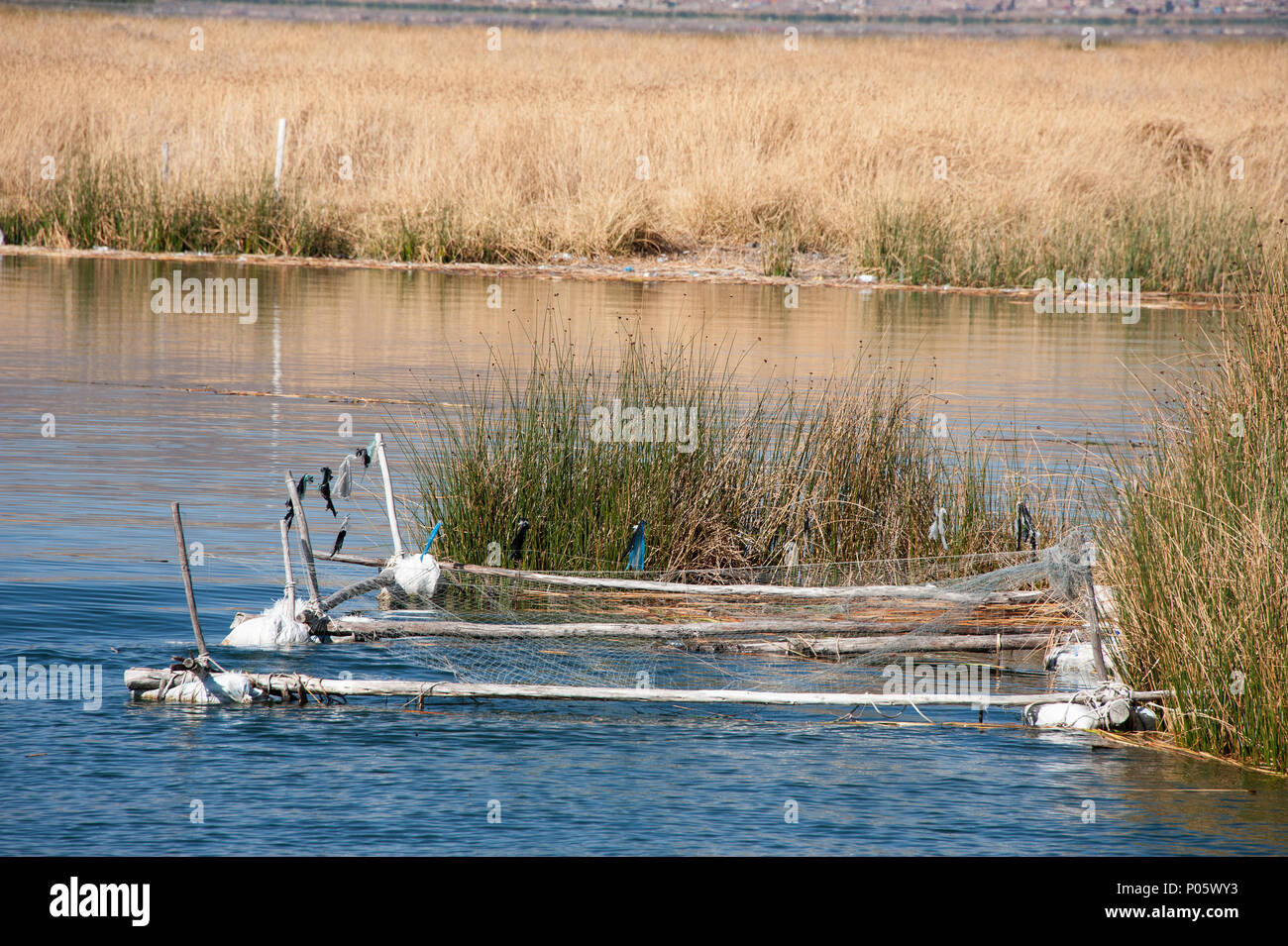 A hand made device for catching fish on the  Uros floating Islands in Puno, Lake Titikaka Peru - Stock Image