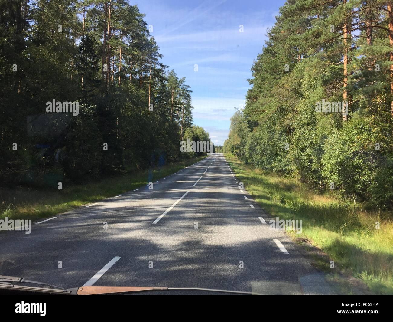 Schnurgerade Landstrasse in Schweden, Weg Reise Roadtrip Sweden - Stock Image