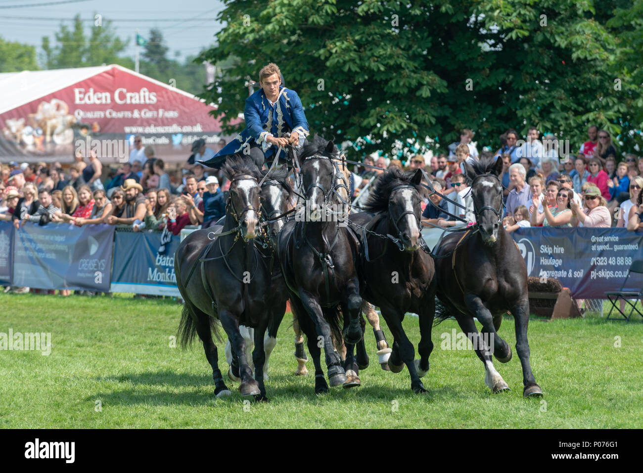 A rider from the Atkinson Action Horses stands on the back of two horses and controls four more horses while they gallop around the showground thrilling the crowd at the South Of England Show in Ardingly, Sussex, UK. Stock Photo