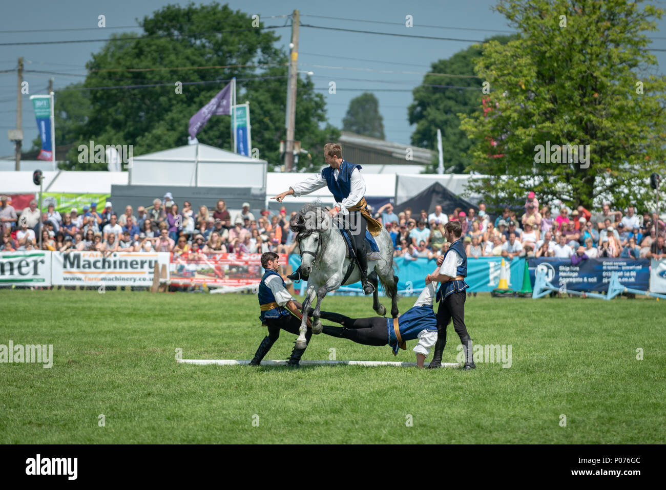 While riding a horse, a rider from the Atkinson Action Horses jumps over a man during a performance at the South Of England Show in Ardingly, Sussex, UK. - Stock Image