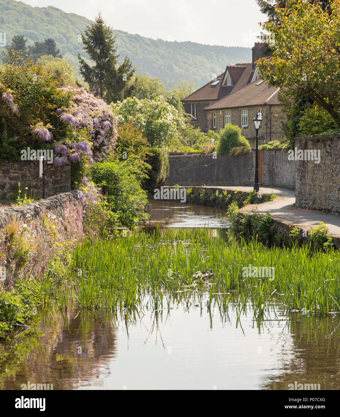 Waterside walk along a tributary of the river Wye in Bakewell, Derbyshire, England - Stock Image