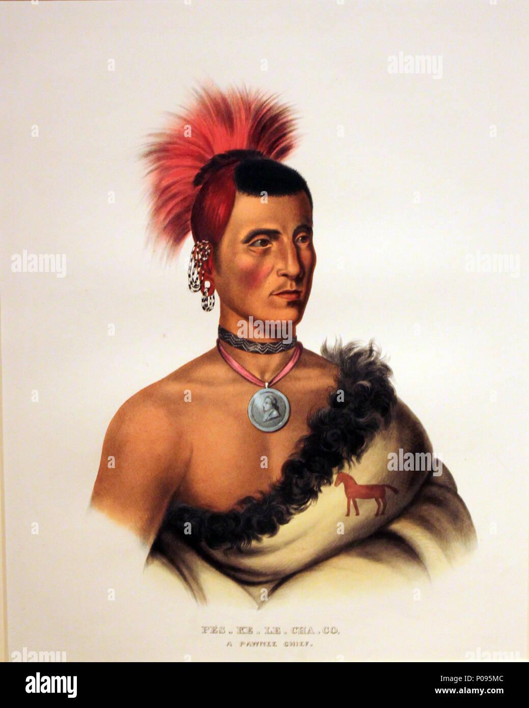 .  English: Pawnee Chief Pes Ke Le Cha Co Deutsch: Pawnee Häuptling Pes Ke Le Cha Co . 1833 20 1833 Catlin Pes Ke Le Cha Co, Pawnee Chief anagoria Stock Photo