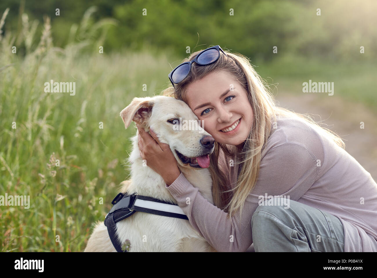 Happy smiling golden dog wearing a walking harness sitting facing its pretty young woman owner who is caressing it with a loving smile outdoors in cou - Stock Image