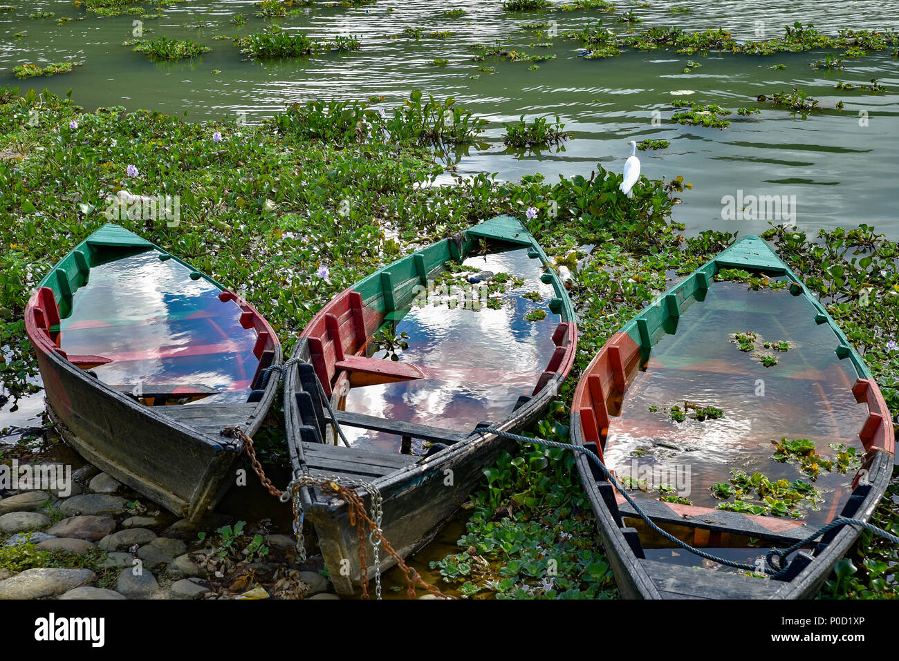 Boats on Fewa Lake, Pokhara, Nepal - Stock Image