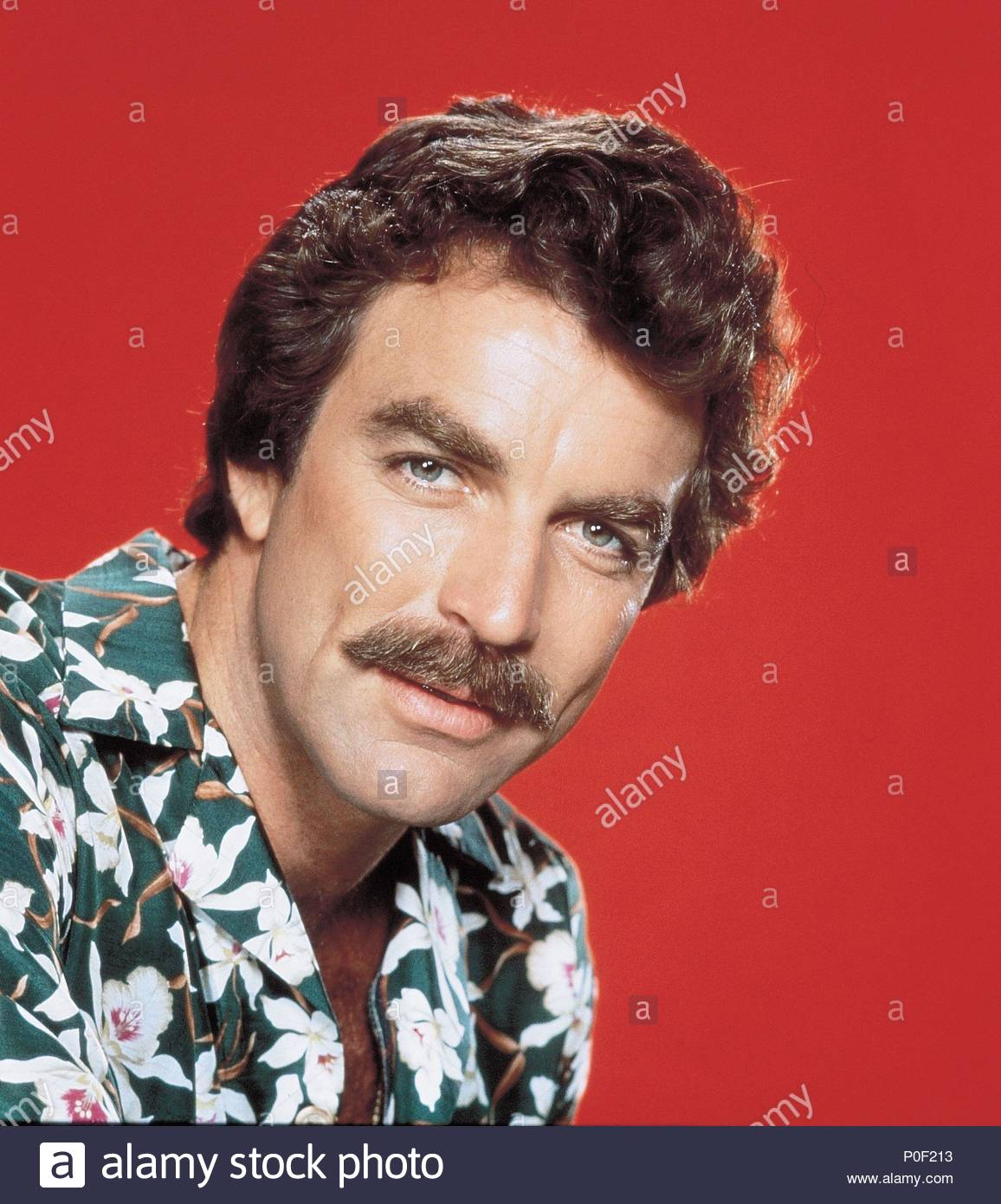 b37b1247cfbe2 Tom Selleck Stock Photos   Tom Selleck Stock Images - Alamy