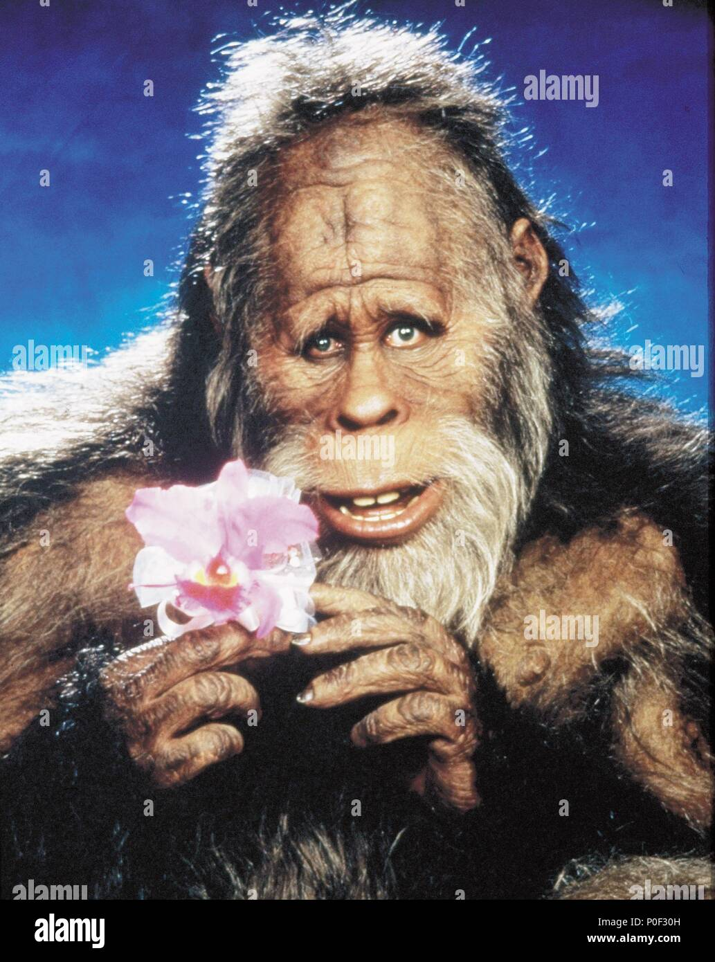 Harry And The Hendersons Stock Photos & Harry And The ...Kevin Peter Hall Harry And The Hendersons